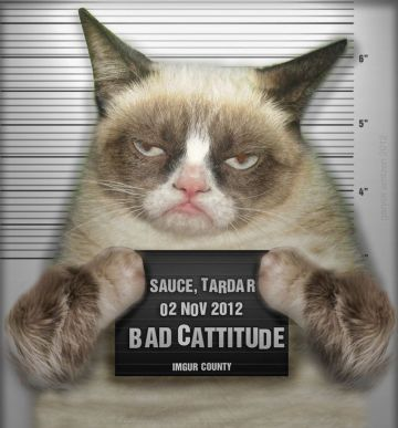 grumpy-cat-clipart-bad-mood-1