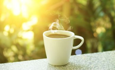 Mug-Coffee-Counter-Morning-Sun.jpg.560x0_q80_crop-smart